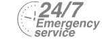 24/7 Emergency Service Pest Control in Beckenham, Elmers End, Park Langley, BR3. Call Now! 020 8166 9746