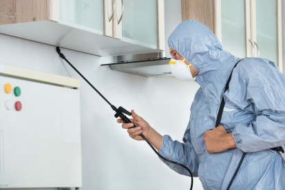 Home Pest Control, Pest Control in Beckenham, Elmers End, Park Langley, BR3. Call Now 020 8166 9746